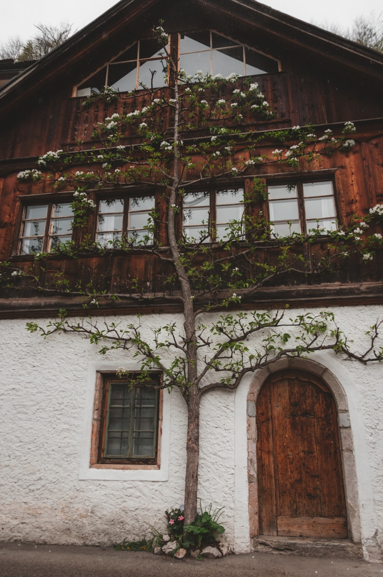 Hallstatt (6 di 18)