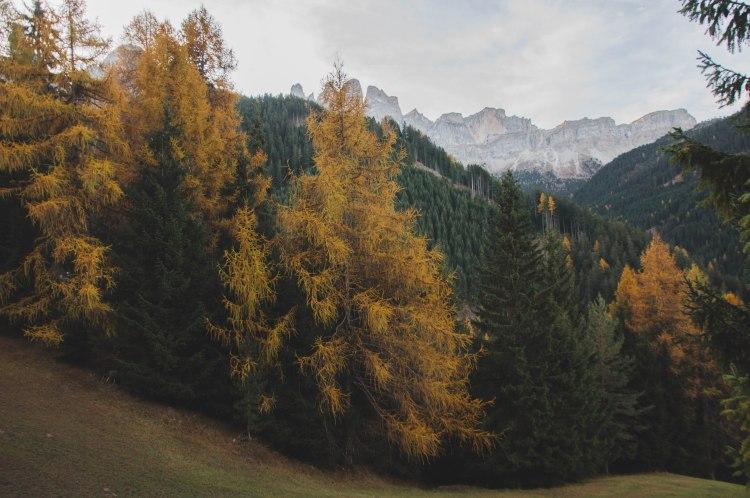 4.fall (11 di 11)