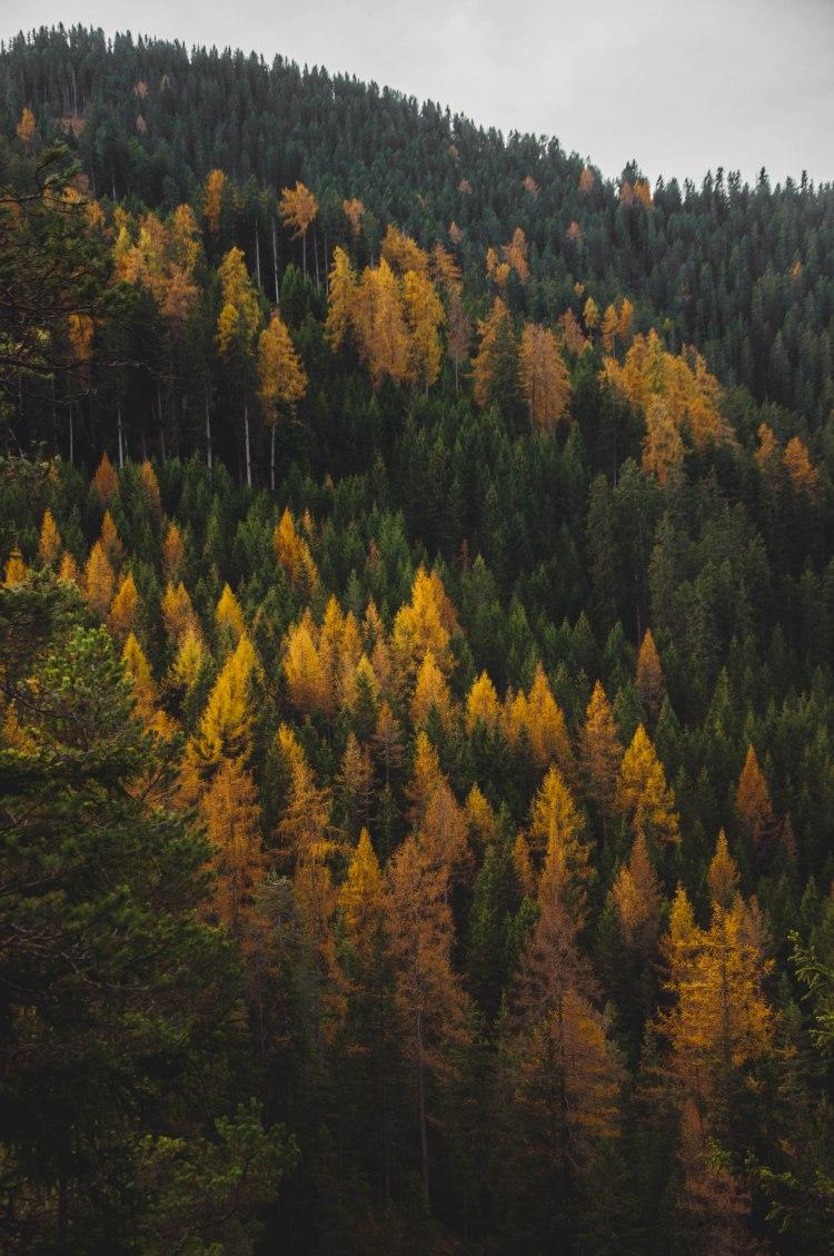 4.fall (2 di 11)